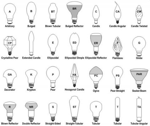 Bulb Sizes Thanks To This Size Chart From Bulbs.com. Take The Number And  Divide By 8 And That Is The Diameter Of The Bulb At Its Widest Point. Amazing Pictures